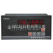 XMDA-6000智能巡回显示调节器